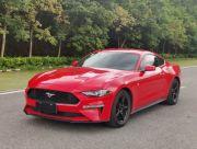 福特 野马 2016款 2016款 2.3T 性能版